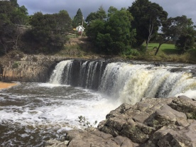 Haruru Falls - Bay of Islands