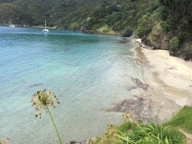 Oke Bay - Rawhiti (Bay of Islands)