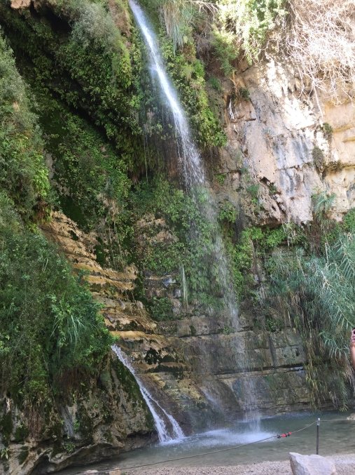 David's Waterfall - Ein Gedi Nature Reserve