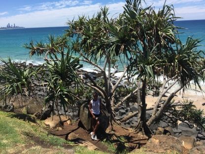 Burleigh Heads Overlook