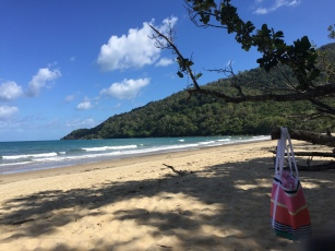 Cow Bay Beach (Daintree National Park)